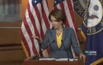 Pelosi-denies-Gruber-2014nov-full