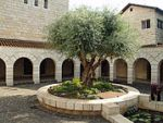 180px-Courtyard_of_the_Church_of_the_Multiplication_in_Tabgha_by_David_Shankbone