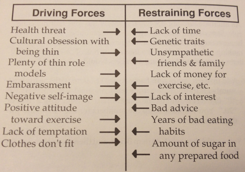 How A Force Fieldysis Can Help You Make Changes Jon