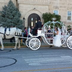Fancy Chair Rental Blue Ridge Works Wedding Carriage Rides - Indianapolis Venue