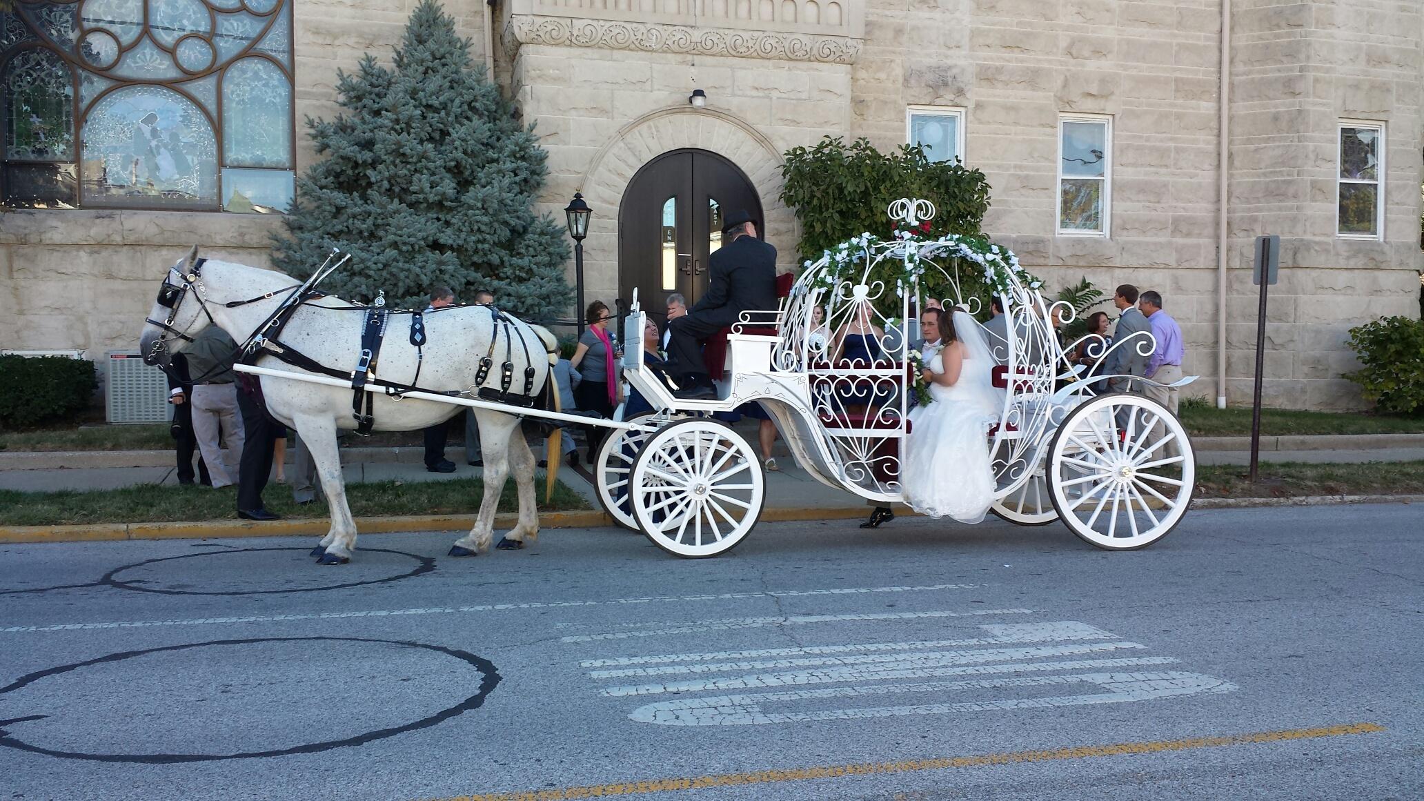 Wedding Carriage Rides  Indianapolis Wedding Venue