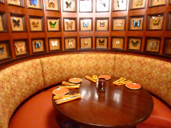 Butterfly Booth at Skipper Canteen