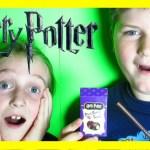 Harry Potter Beanboozled Challenge