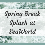 How to Make a Spring Break Splash at SeaWorld