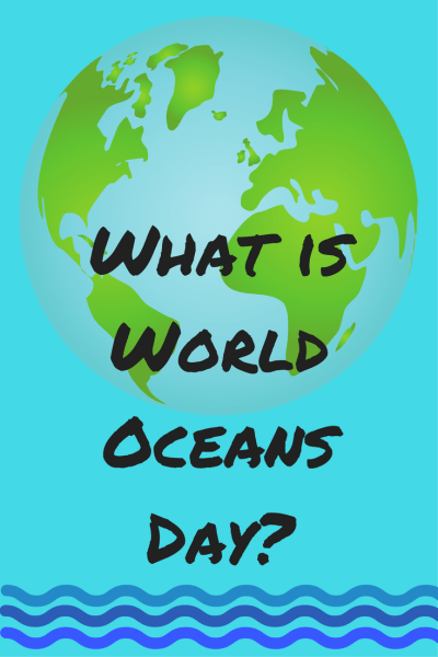 What is World Oceans Day? See how the SeaWorld Rescue Team has contributed to World Oceans Day including animal rehab and marine debris clean-up.