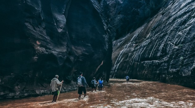 Top 3 Zion Hikes to Do at Zion National Park