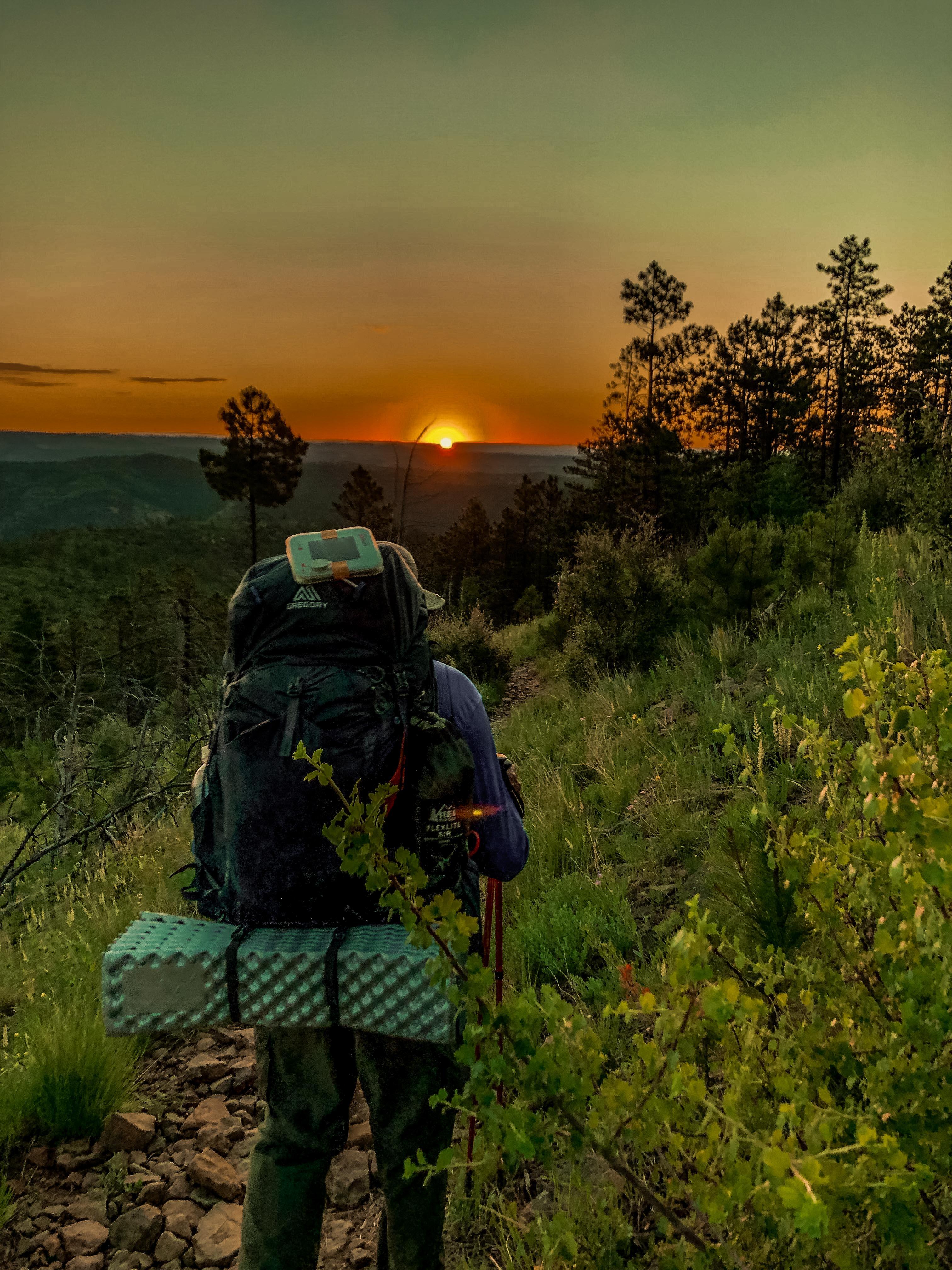 Best Backpacks for Hiking 2019 Gregory Baltoro 65