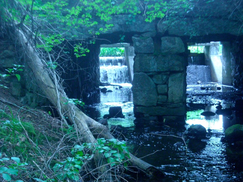 Forge Pond Dam