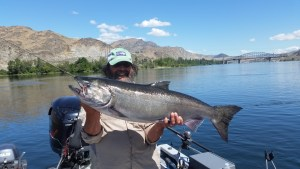 Upper Columbia Summer Chinook