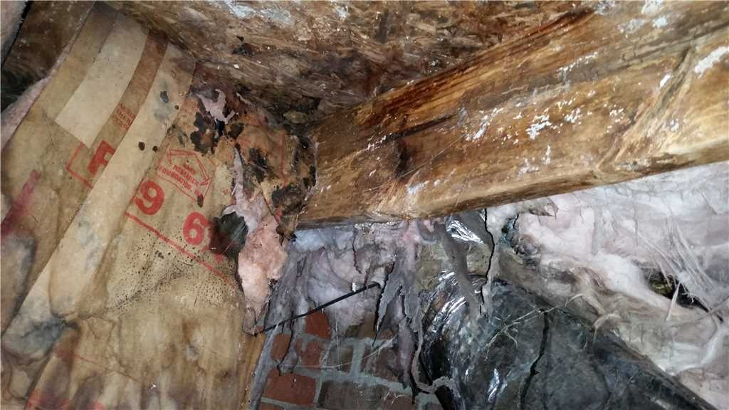 Inspecting Your Crawl Space