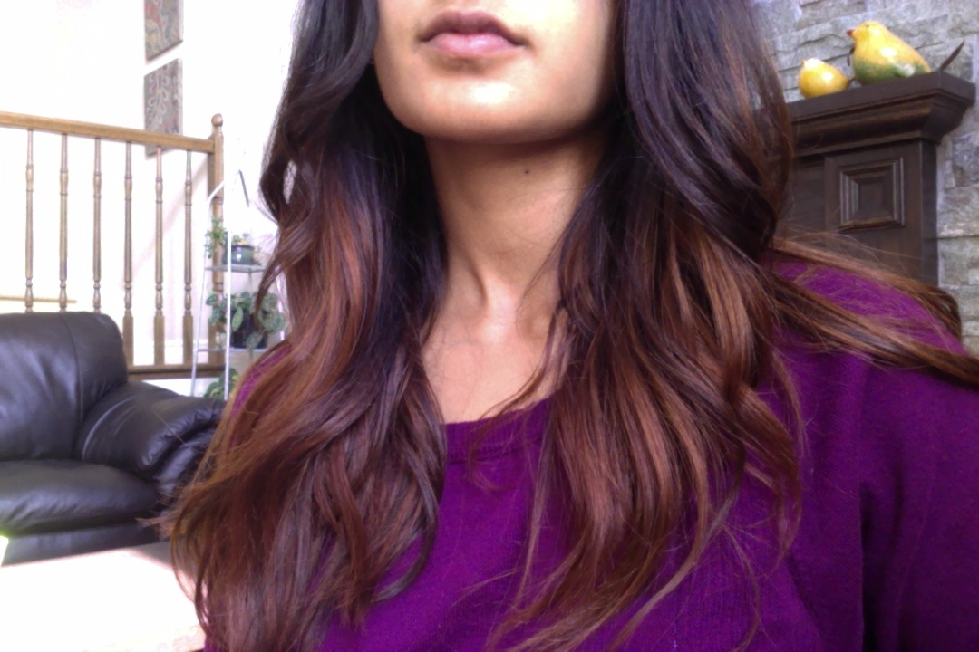 Lush Henna OMBRE HAIR TUTORIAL Joni Journal