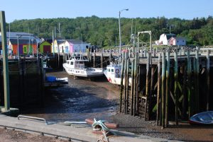 #Canada150 Low tide in Bay of Fundy vacation