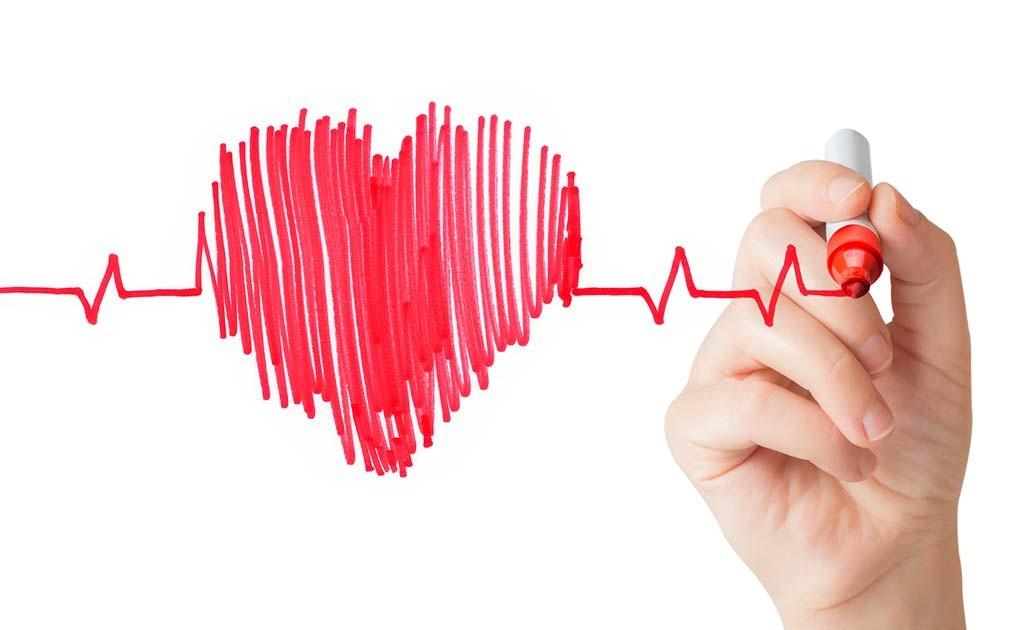 Tava sirds