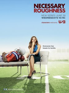 television_necessary_roughness