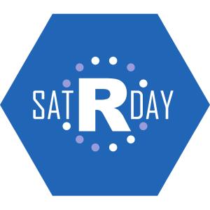 satRday Logo