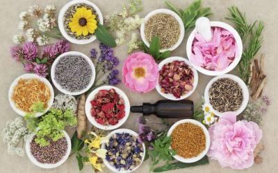 My Homeopathy Dilemma