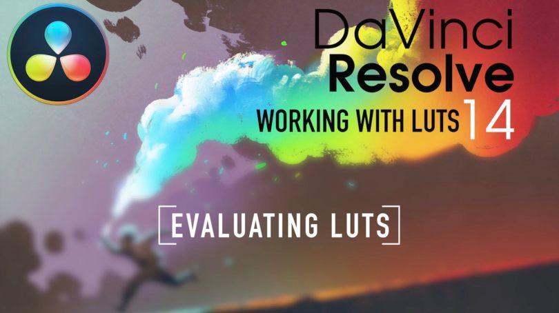 LUT Training in Resolve
