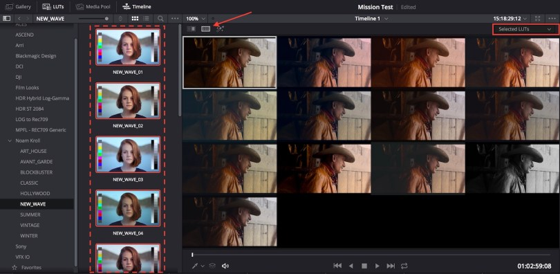 full screen lut preview in DaVinci Resolve