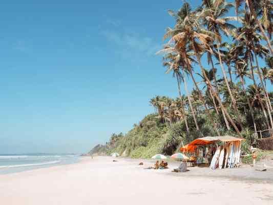 sri lanka trip, visit sri lanka, sri lanka tourists places, sri lanka itinerary, places to visit in sri lanka, sri lanka holidays, best places to visit in sri lanka, tourist attractions in sri lanka, sri lanka tourist places, best beaches in sri lanka, what to do in sri lanka, sri lanka attractions, sri lanka blog, beautiful places in sri lanka, best places in sri lanka, sri lanka points of interest, things to see in sri lanka, things to do in sri lanka, sri lanka beaches, sk town sri lanka, sk town matara, sk town, sk town beach, sk town beach sri lanka, sri lanka surf, surf camp sri lanka, matara sri lanka, surf and yoga sri lanka, 2 weeks in sri lanka itinerary, sri lanka itinerary, 2 weeks in sri lanka, sri lanka itinerary 3 weeks, two weeks in sri lanka, sri lanka two week itinerary, sri lanka travel itinerary, sri lanka travel guide, best itinerary for sri lanka, sk town matara, sri lanka surf, matara, sk town matara sri lanka
