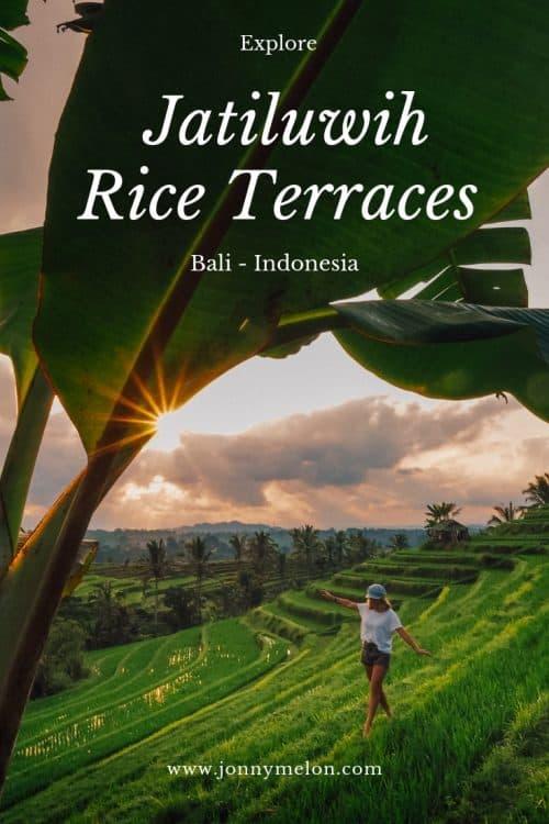 jatiluwih rice terraces