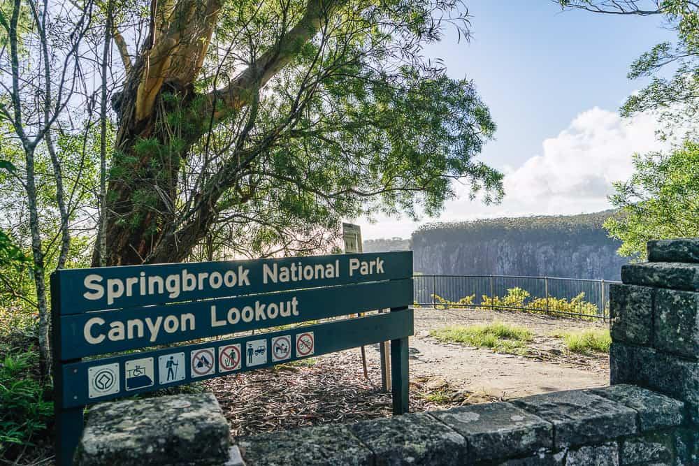 twin falls circuit, twin falls gold coast, twin falls springbrook, springbrook waterfall, springbrook national park waterfalls, waterfalls gold coast, waterfalls springbrook