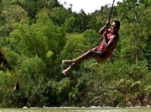 swingingvine