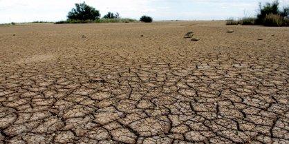 Procédure calamités agricoles