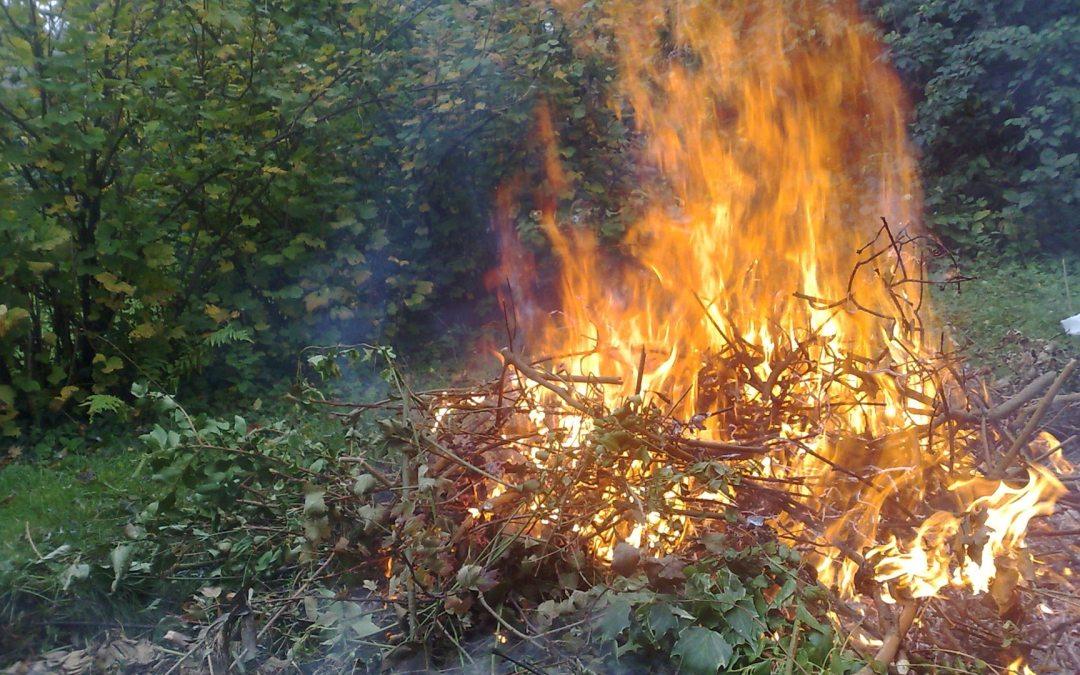 Interdiction temporaire de brûlage de végétaux