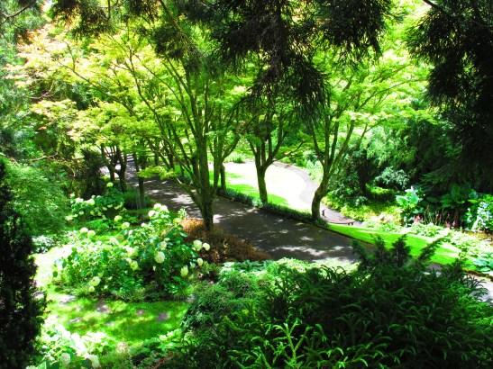 Tupare Garden, Taranaki