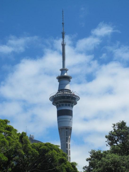 Skytower IMG_1417