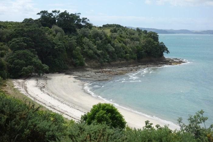 DSC00926 Calypso Bay