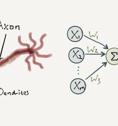if the combined intensity of these signals is sufficient the neuron will fire off another signal to other neurons in the network  [ 1925 x 1086 Pixel ]