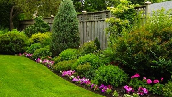 free beautiful garden