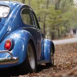 Free Photo Blue Volkswagen Beetle Vintage Car Surrounded By Dry Leaves During Daytime Automobile Roadway Way Free Download Jooinn