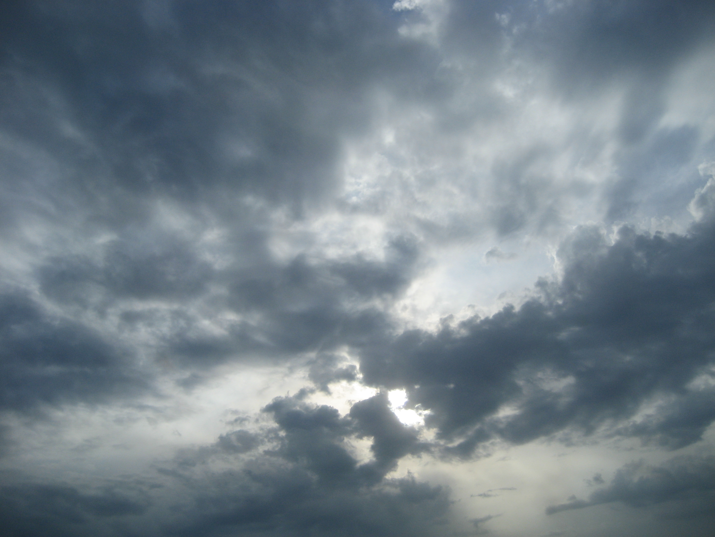 Fall Dog Wallpaper Free Photo Gloomy Sky Sky Skies Spooky Free