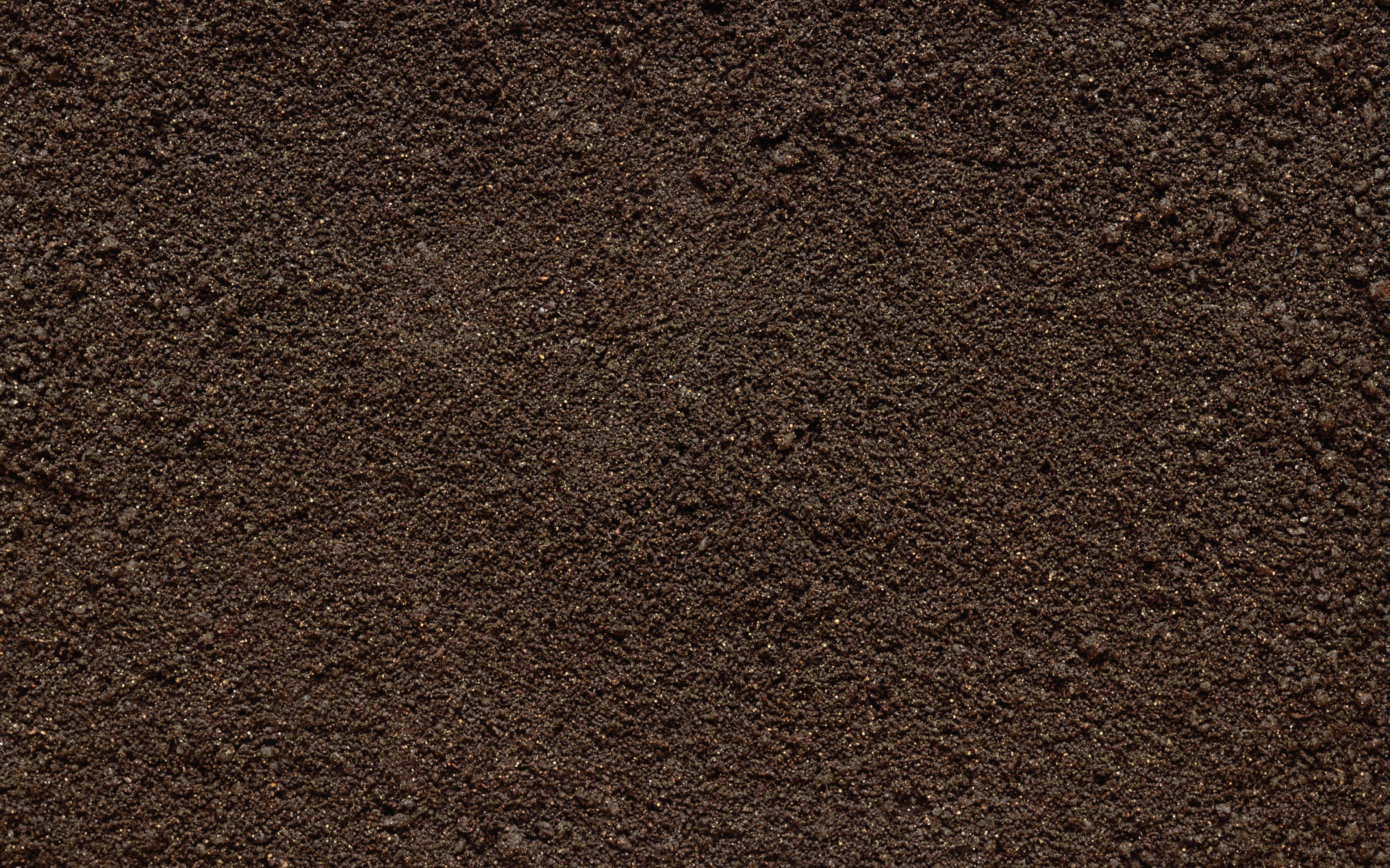Free Photo Soil Texture