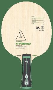 Vyzaryz Hybrid