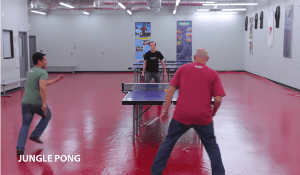 Fun Games By JOOLA: Jungle Pong & Floor Pong