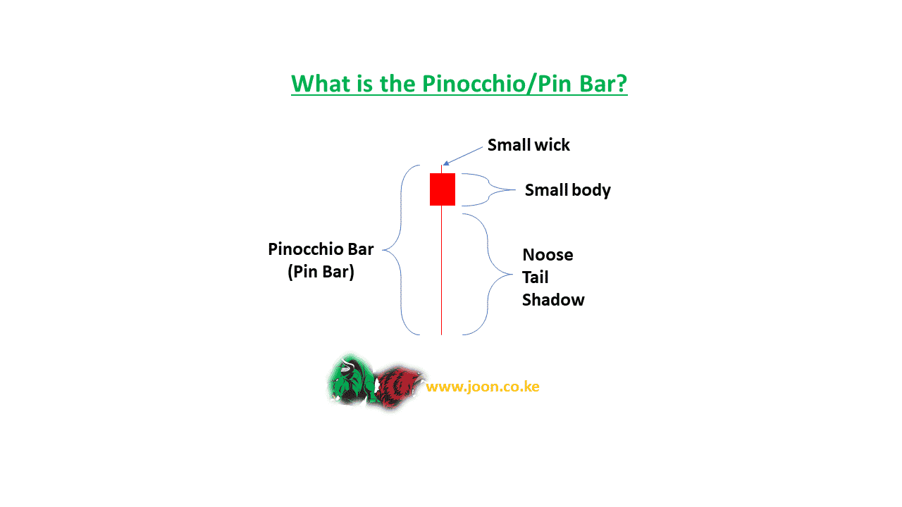 What is the Pinocchio Pin Bar