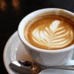 【新橋カフェ】忙しい毎日に極上の癒しを提供する超おすすめ20選