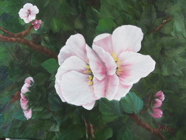 Apple Blossoms (2013)