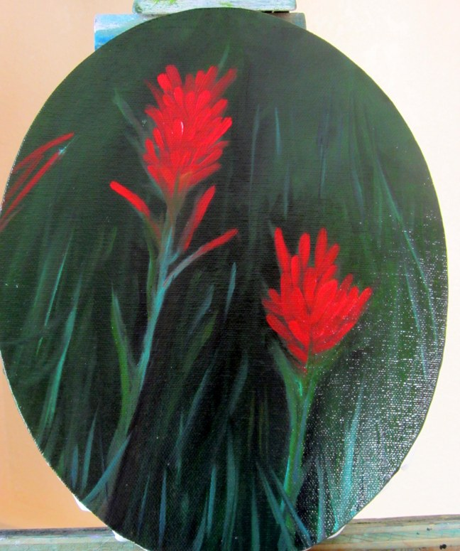 Indian Paintbrush 01 (2012)