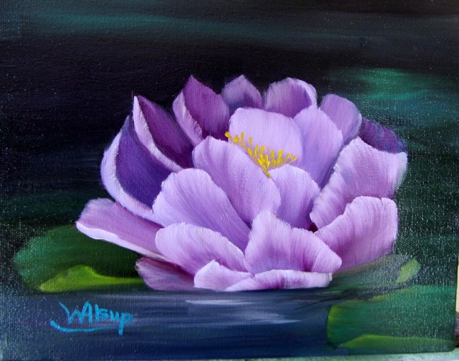Water Lilly - 002