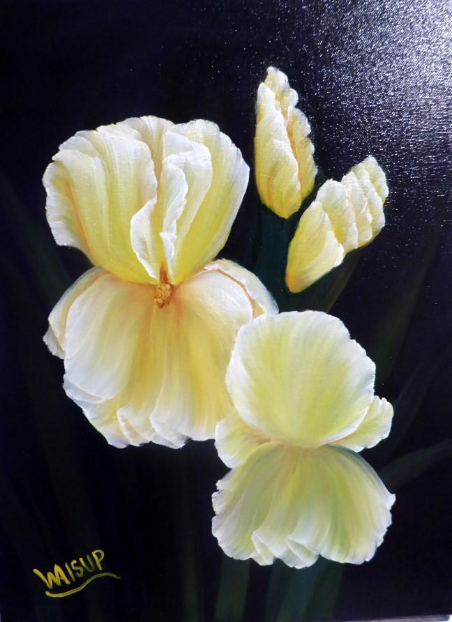 Yellow Iris(2016)