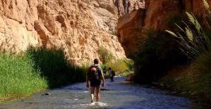 Mujib Reserve - Jordan Tours