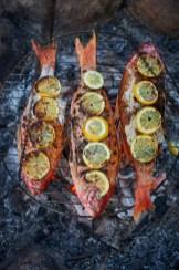 LCM_Foodographer_Food_Photographer_Stylist_Lancaster_PA_Jordan_Bush_Photography_37 Food