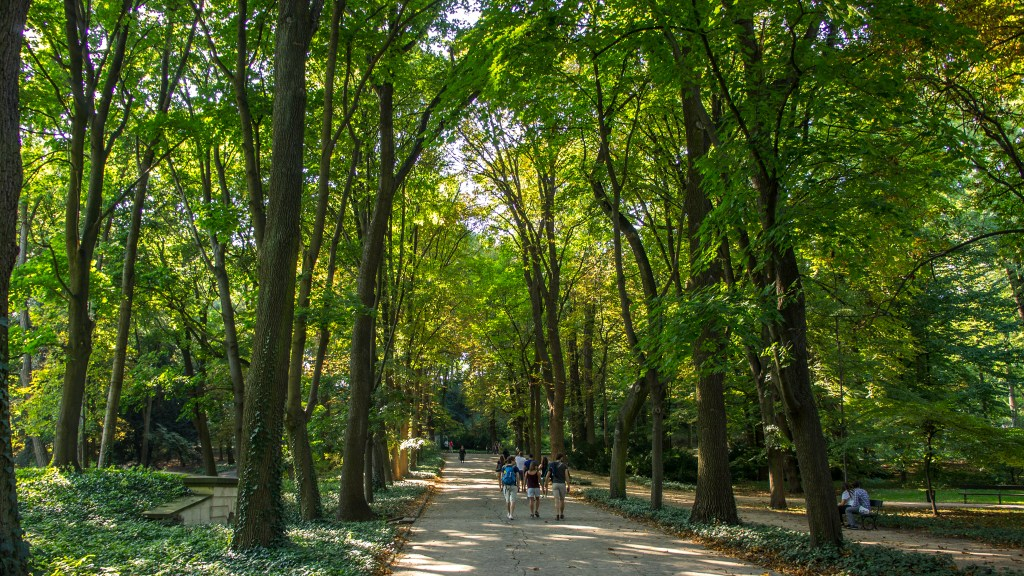 This 76 hectare park is the largest in Warsaw
