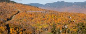 Jordan Hotel with fall foliage