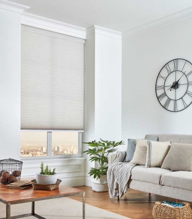 Pleated blinds 11