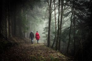Couple walking together in a dark forest getting physical activity woman is wearing a dark red jack and the man a black jacket. Try online therapy with :aura jordan or check out Jordan Therapy Services website for help with physical activity resources. Get in touch via email.